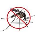 Soins anti-moustique bio