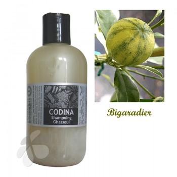 Shampoing liquide bio Ghassoul pour cheveux tendance gras